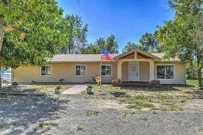 Fort Lupton Single Family Home Active: 15502 Morris Avenue