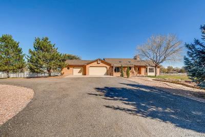 Broomfield Single Family Home Under Contract: 15542 Quivas Street