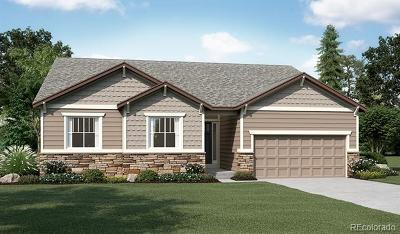 Castle Rock Single Family Home Active: 6791 Iron Gate Street