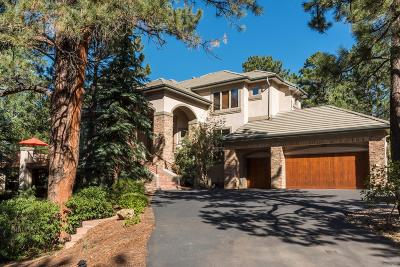 Castle Rock CO Single Family Home Active: $1,250,000