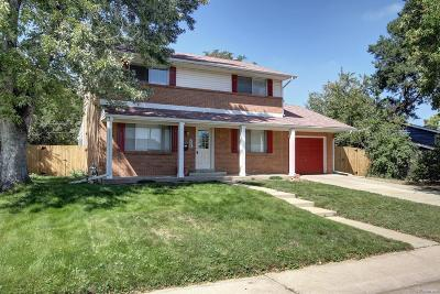Aurora Single Family Home Active: 331 South Victor Street