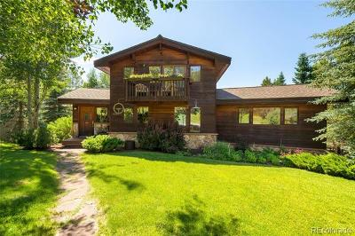 Routt County Single Family Home Active: 1854 Hunters Court