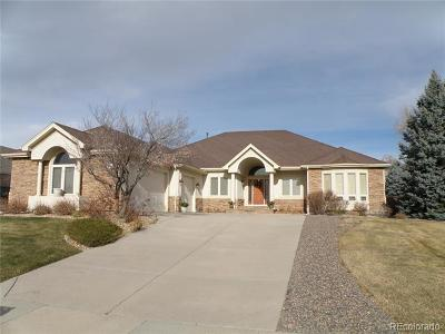 Arvada Single Family Home Active: 13105 West 81st Avenue