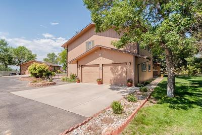 Mead Single Family Home Under Contract: 17961 Frontier Road