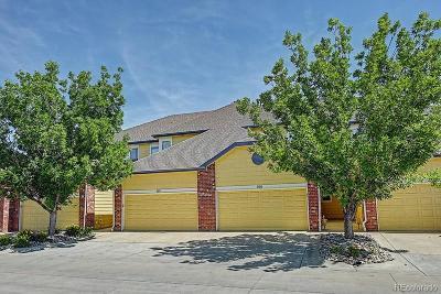 Superior Condo/Townhouse Under Contract: 2855 Rock Creek Circle #308