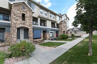 Castle Rock Condo/Townhouse Active: 431 Black Feather Loop #812