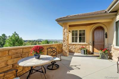 Castle Rock CO Single Family Home Active: $1,025,000
