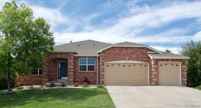Parker Single Family Home Active: 16367 Prairie Farm Circle