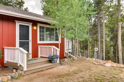 Conifer Single Family Home Under Contract: 31977 Stenzel Drive