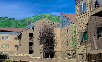 Steamboat Springs Condo/Townhouse Active: 1625 Shadow Run Frontage #204