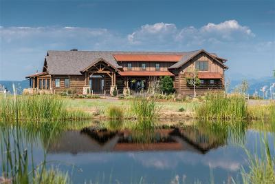 Castle Rock CO Single Family Home Under Contract: $2,995,500