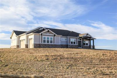 Parker CO Single Family Home Active: $799,999