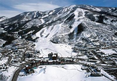 Condo/Townhouse Active: 2300 Mt. Werner Circle 647/650 Qiv #Unit 647
