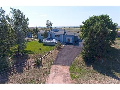 Adams County Single Family Home Active: 2254 Haskell Way