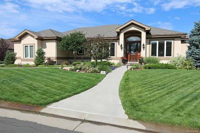 Castle Rock Single Family Home Under Contract: 4565 Lions Paw Street