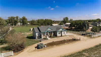 Longmont Single Family Home Active: 5109 County Road 16 3/4