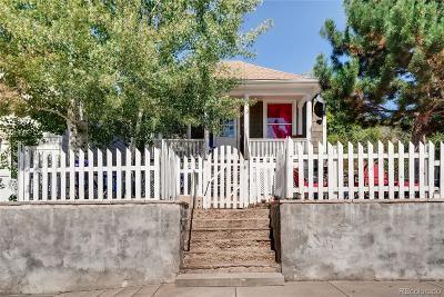 Clear Creek County Single Family Home Active: 632 Colorado Boulevard