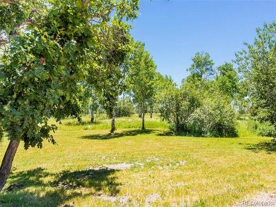 Residential Lots & Land Active: 27335 Whitewood Drive