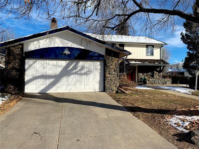 Denver Single Family Home Active: 662 South Fulton Street