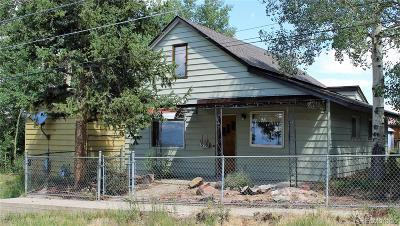 Leadville Single Family Home Active: 398 East 2nd Street