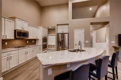 Castle Rock Single Family Home Active: 466 Sage Grouse Circle