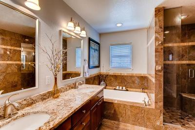 Highlands Ranch Single Family Home Active: 3344 Sturbridge Drive