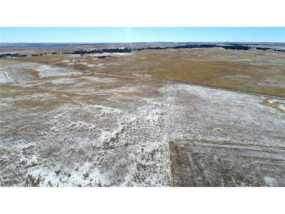 Kiowa Residential Lots & Land Active: Lot 2 County Road 134