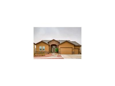 Peyton Single Family Home Under Contract: 12691 Wheeler Peak Drive