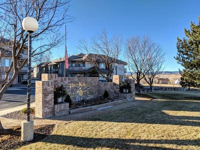 Castle Rock Condo/Townhouse Active: 920 East Plum Creek Parkway #206