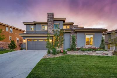 Highlands Ranch Single Family Home Under Contract: 10729 Skydance Drive