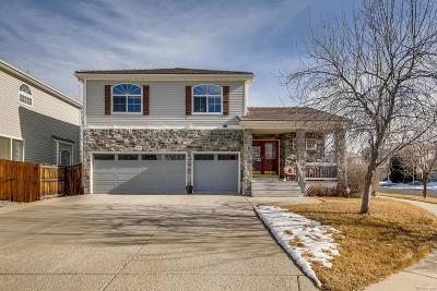 Denver Single Family Home Active: 4808 Jericho Street
