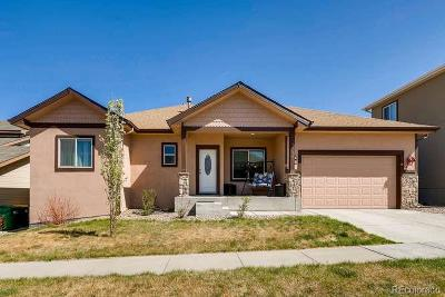 Henderson Single Family Home Under Contract: 10821 Barclay Court