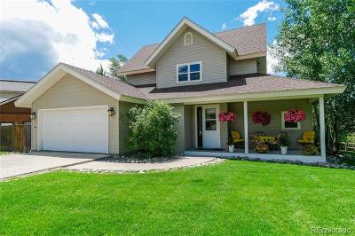Steamboat Springs Single Family Home Active: 27389 Brandon Circle