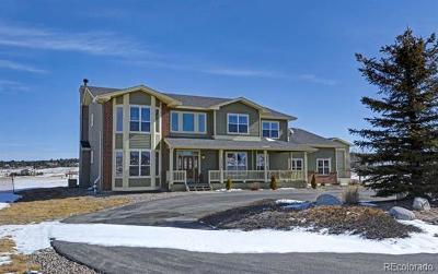 Colorado Springs Single Family Home Active: 19679 Glen Shadows Drive