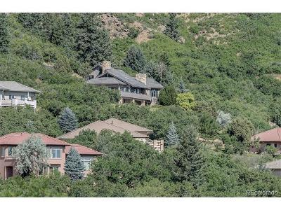 Douglas County Single Family Home Active: 10592 Sandstone Run