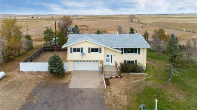 Strasburg Single Family Home Under Contract: 54001 East Bison Drive