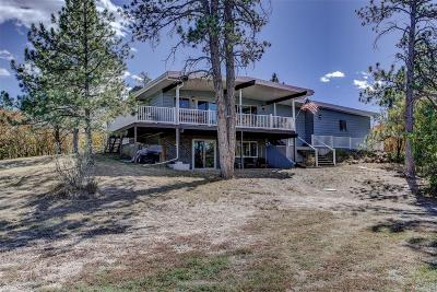 Castle Rock CO Single Family Home Active: $825,000