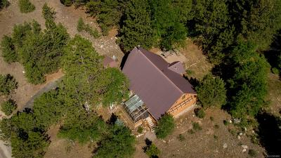 Nathrop Single Family Home Active: 14255 County Road 261c