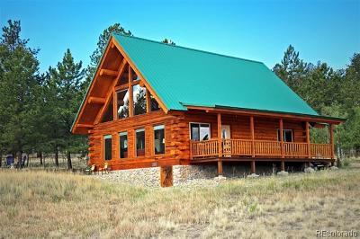 Hartsel Single Family Home Active: 784 Concho Trail
