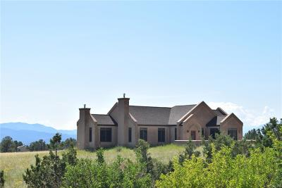 Nathrop Single Family Home Active: 13777 County Road 261b