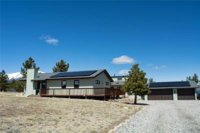 Nathrop Single Family Home Active: 13535 County Road 261a