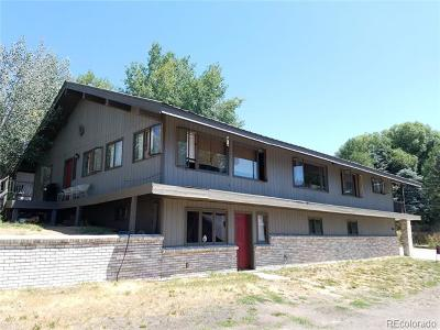Steamboat Springs CO Single Family Home Active: $1,195,000