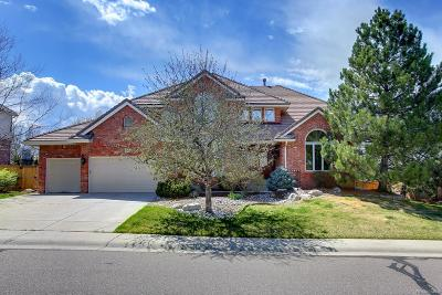 Highlands Ranch Single Family Home Under Contract: 9221 Rockport Lane