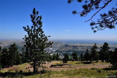 Residential Lots & Land Active: 21219 Cedar Lake Road