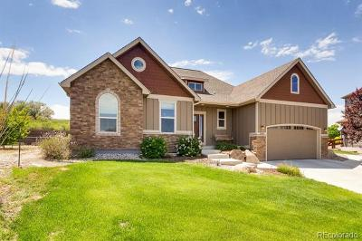 Windsor Single Family Home Active: 2056 Sandwater Court
