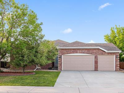 Parker Single Family Home Under Contract: 17529 East Hawksbead Drive
