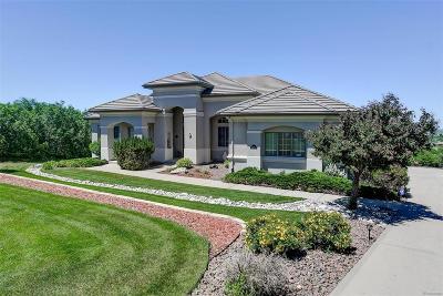 Castle Rock Single Family Home Active: 5865 Granite Way
