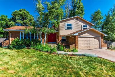 Denver Single Family Home Active: 4088 South Wisteria Way