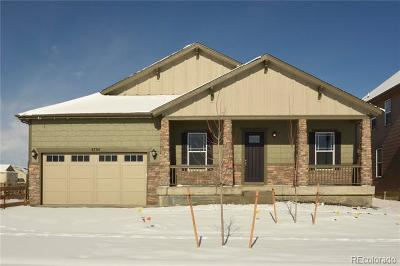 Longmont Single Family Home Active: 4734 Summerlin Place
