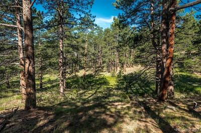 Evergreen Residential Lots & Land Under Contract: 685 Rainbow Glen Road